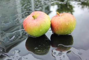 apples-2797257_960_720