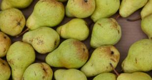 pears-2724159_960_720