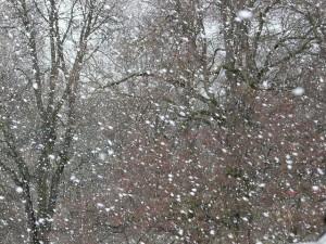 snowfall-16323_640