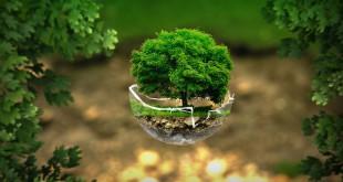 environment-2196690_640