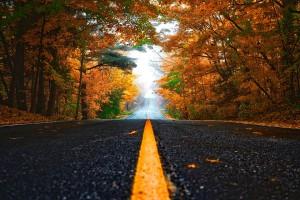 autumn-1758194_960_720