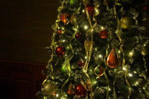 christmas-tree-708003_960_720