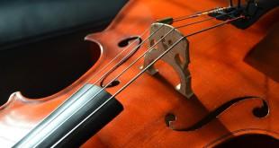 cello-2817159_960_720